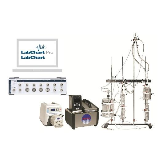 Rat Working Heart foundation system